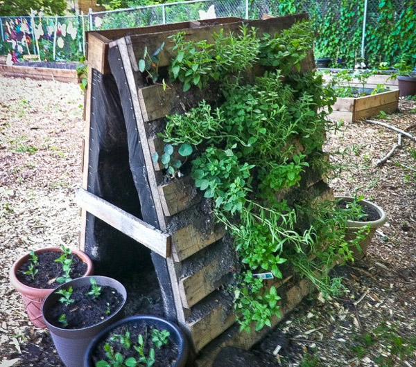 cerca de madeira para jardim passo a passo:Faça um jardim vertical com paletes de madeira passo a passo