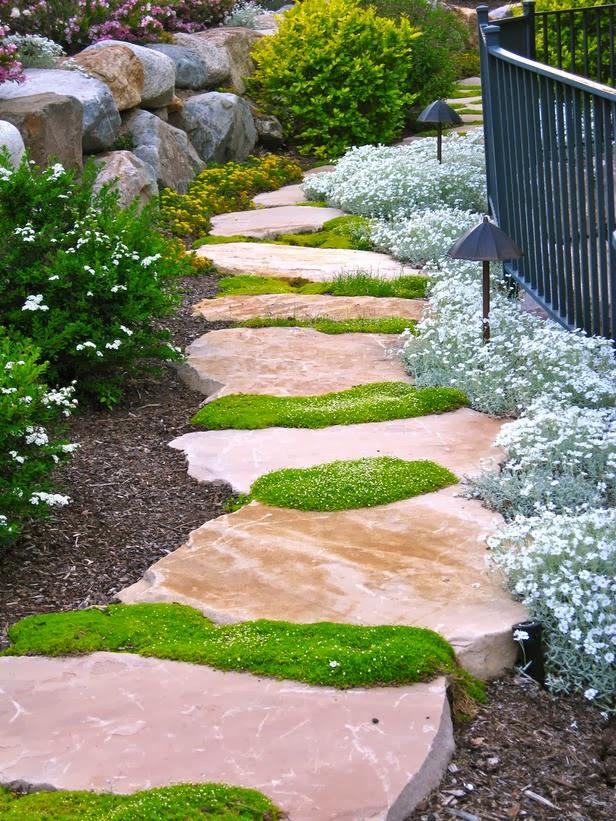 ideias caminhos jardim:caminho_jardim_pesdras_grandes