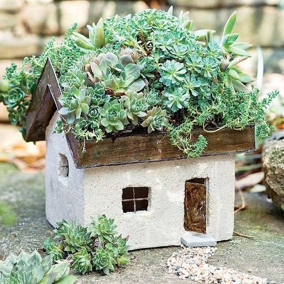artesanato mini jardim:Mini jardim no teto de casinha de cimento