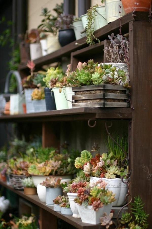 Jardineira vertical de plantas suculentas fa a voc mesmo - Japanese interior home garden ideas ...