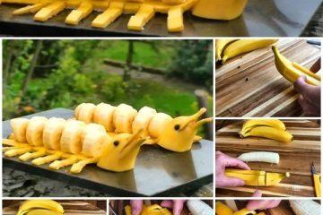 golfinho de banana